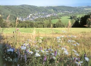 Blick auf das idyllische Bergbaustädtchen Geising, Erholung pur beim Wandern - Foto: Christian Prager