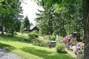 der Kurpark in Bärenfels