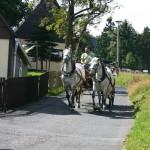 Mit der Pferdekutsche durch das Erzgebirge
